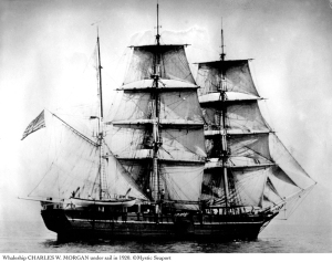 Photo from the Mystic Seaport website. Charles W. Morgan under sail.